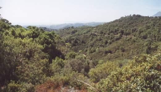 Rustik Plot 95000 m2. Det smukke uspolerede landskab omkring Gården. Fremragende udsigt. Estepona.